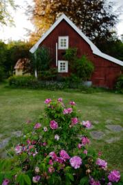 Omberg hostel, Omberg, Östergötland