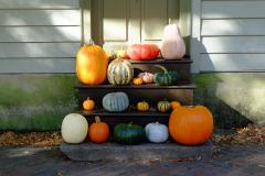 Halloween in Old Salem