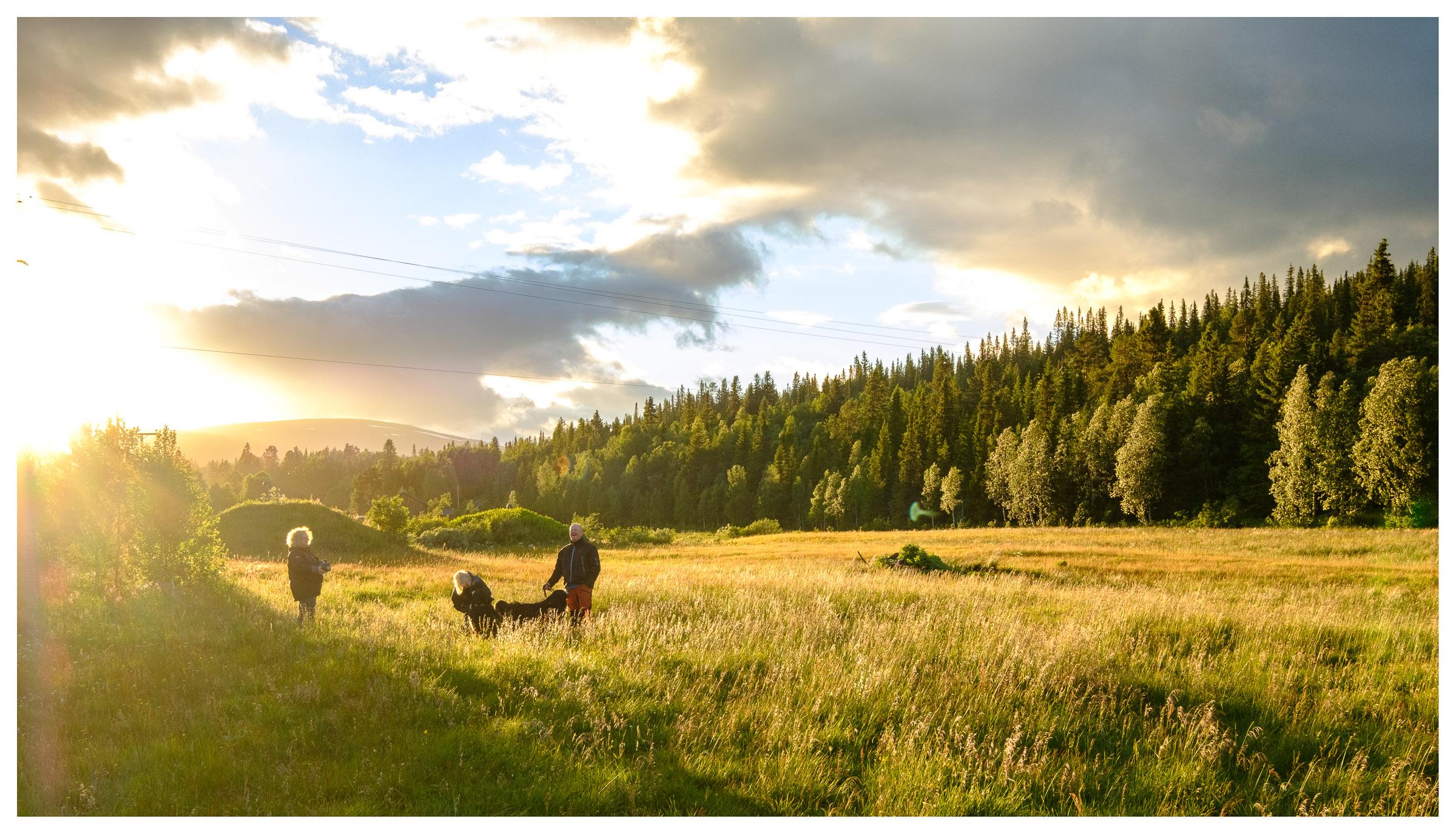 Evening walk down to Gautsträsket lake