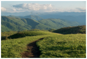 Max Patch looking south.